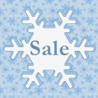Winter Sale — Stock Photo #38430983