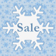 Winter Sale — Stock Photo