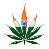 Marijuana in India — Stock Photo