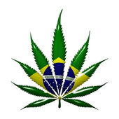 Marijuana in Brazil — Stock Photo