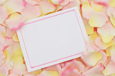 A blank card for your message — Stock Photo