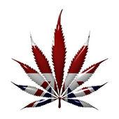 Marijuana in England — Stock Photo