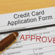 Credit Card Application Form — Stock Photo #50413283