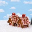 Gingerbread House — Stock Photo #6326382