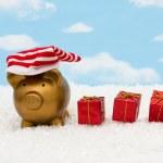 Christmas Savings — Stock Photo #6326420