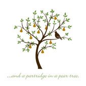 """...and a partridge in a pear tree"" Christmas card in vector forma — Stock Vector"