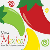 Viva Mexico card — Stock Vector
