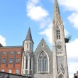 Dublin Cathedral — Stock Photo