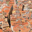 Roofs — Stock Photo #31338777