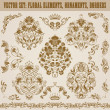 Set of vector damask ornaments. — Vector de stock  #26831611