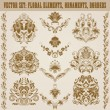 Set of vector damask ornaments. — Vecteur #26937629