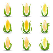 Corn Icon or symbol vector set — Foto de Stock