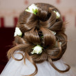 Hairstyle bride - Stock Photo