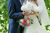 Düğün görüntü — Stok fotoğraf