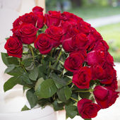 Bouquet of Red Roses — Stok fotoğraf