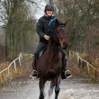 Paardensport ruiter en paard — Stockfoto