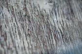Alte bemalte wand textur, grunge, hintergrund, farbe geknackt — Stockfoto