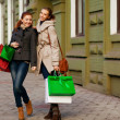 Royalty-Free Stock Photo: Attractive girlfriends go shopping