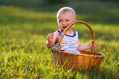 Little boy in the meadow in the basket — Stock Photo