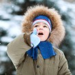 Portrait of  little boy in winter — Stock Photo