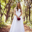 Royalty-Free Stock Photo: Girl in a wedding dress
