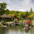 Japanese Formal Garden With Mount Fuji - Stock Photo