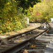 Autumn railroad — Stock Photo