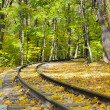 Autumn railroad - Stock Photo