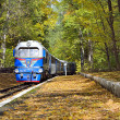 Stock Photo: Autumn railroad