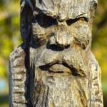 Wooden idol — Stock Photo #13689646