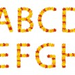 Autumn leaves alphabet letters — Stock Vector #12682570