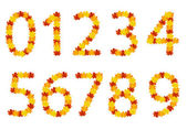 Autumn leaves numbers — Stock vektor