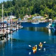 White Sailboats Marina Kayaks Reflection Gig Harbor Washington S — Stock Photo