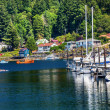 White Sailboats MarinKayak Reflection Gig Harbor Washington St — Stock Photo #12777877