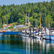 White Sailboats Marina Reflection Gig Harbor Washington State - Stock Photo