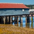 Old Fishing Dock Low Tide Gig Harbor Washington State — Stock Photo
