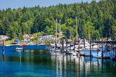 White Sailboats Marina Reflection Gig Harbor Washington State — Stock Photo