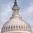Stock Photo: US Capitol Dome Freedom Statue Washington DC