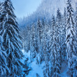 Snowy Ice Blue Stream Snow Mountain Peak Snoqualme Pass Washingt — Stock Photo