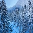 Snowy Ice Blue Stream Snow Mountain Peak Snoqualme Pass Washingt — Stock Photo #23924233