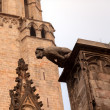 Gargoyle Catholic Barcelona Cathedral Catalonia Spain - Stock Photo