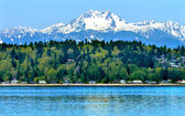 Bainbridge Island Puget Sound Mount Olympus Snow Mountain Olympi — Stock Photo