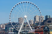 Ferris Wheel Buildings Waterfront Seattle Washington — Stock Photo