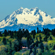 Bainbridge Island Mount Olympus Snow Mountain Olympic National P — Stock Photo