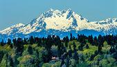Bainbridge island mount olympus sneeuw berg olympische nationale p — Stockfoto