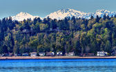 Bainbridge Island Puget Sound Snow Mountains Olympic National Pa — Stock Photo