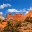 Stock Photo: Rock Canyon Devils Garden Arches National Park Moab Utah