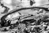 Jardín paisaje roca blanca negra arco cañón diablos arcos nati — Foto de Stock