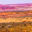 Stock Photo: Painted Desert Yellow Grass Lands Orange Sandstone Red Moab Faul