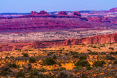 Yellow Grass Lands Red Canyon Moab Fault Arches National Park Mo — Stock Photo